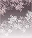 Flowers, Lace Roses Card. Stock Images - 54051514