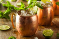 Icy Cold Moscow Mules Stock Photos - 54055113