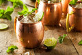 Icy Cold Moscow Mules Stock Image - 54055161