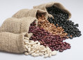 White Beans, Kidney Beans, Pinto Beans And Black Beans. Stock Image - 54126511