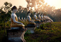 Buddhas Garden Stock Photography - 54161782