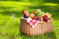 Picnic Basket With Food On Green Grass. Stock Photography - 54188752