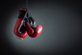 Boxing Gloves Stock Image - 54214821