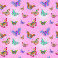 Seamless Texture Butterfly Stock Photo - 54215600
