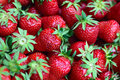 Strawberries Royalty Free Stock Photography - 54265037