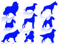 Dogs Breeds Silhouette Stock Photo - 5434510