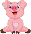Cartoon Adorable Baby Pig Royalty Free Stock Images - 54300659
