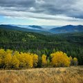 Fall Colors With Smoke Royalty Free Stock Photography - 54353217