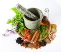 Herbs And Spices Royalty Free Stock Photography - 5446957