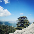 Pine Trees And Rocks On The Blue Sky. Retro Photo. View On The Valley. Royalty Free Stock Photos - 54444718