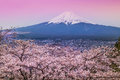 Mountain Fuji In Spring ,Cherry Blossom Sakura Stock Photo - 54461410