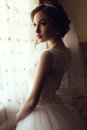 Beautiful Sensual Bride With Dark Hair In Luxurious Lace Wedding Dress Royalty Free Stock Photo - 54463525