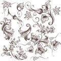 Collection Of Vector Hand Drawn Swirls Stock Photo - 54490290