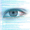Web Computer Code With Human Eye Abstract Background Stock Images - 54496794