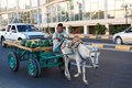 The Donkey-drawn Cart Royalty Free Stock Images - 54499359
