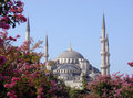 Blue Mosque Royalty Free Stock Photo - 5457645