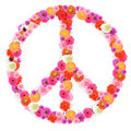 Peace Sign Royalty Free Stock Photo - 5463825