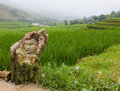 Sculpture In Sapa Royalty Free Stock Image - 54602026