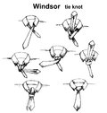 Vector Tie And Knot Instruction Royalty Free Stock Photos - 54635458