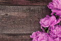 Pink Peony Flower On Dark Rustic Wooden Background With Copy Spa Royalty Free Stock Photo - 54655255