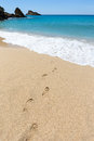 Footsteps In Sandy Beach Leading To Blue Sea At Coast Stock Photography - 54689352