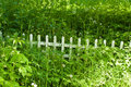 Wooden Fence In The Grass Royalty Free Stock Photo - 5471805