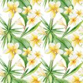 Watercolor Tropical Pattern Royalty Free Stock Images - 54793559