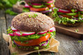 Healthy Fast Food. Vegan Rye Burger With Fresh Vegetables Stock Photo - 54827910