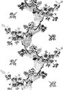 01 Abstract Hand-drawn Floral Pattern Stock Photos - 54901743