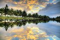 Mirrored Palm Reflection Royalty Free Stock Photography - 54929067