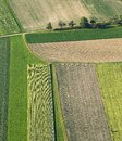 Freshly Plowed And Sowed Farming Land From Above Stock Photo - 54929820