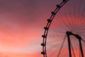 Singapore Flyer At Twilight Royalty Free Stock Photo - 54947705