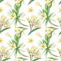 Tropical Pattern Stock Photo - 54972940