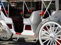 White Carriage Royalty Free Stock Photography - 559847
