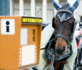 Horse And Information Booth Royalty Free Stock Photography - 5502687