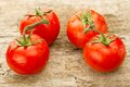 Few Red Tomatoes Branch Royalty Free Stock Photo - 55030885