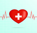 Heart With Cardiogram. Royalty Free Stock Photo - 55044285