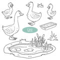 Set Of Cute Farm Animals And Objects, Vector Goose Family Royalty Free Stock Photos - 55061718