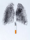 Shape Of Lungs With Charcoal Powder Stock Photos - 55086553