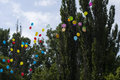 Balloons In The Sky Against Trees And The Sky, The Last Call School Stock Images - 55092484