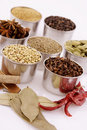 Variety Of Spices Stock Photos - 5514693