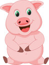 Cute Pig Cartoon Royalty Free Stock Images - 55136889