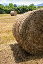 Hay Bales Bale Round Field Countryside Royalty Free Stock Photography - 55161837