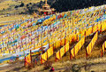 A Lot Of  Tibetan Prayer Flags Flying Wiht Mandala On The Hillside Stock Image - 55252051