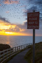 Flocks Of Starlings Above Warning Sign Royalty Free Stock Photos - 55289088