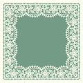 White Lace. Frame. Floral Pattern. Royalty Free Stock Photography - 55290727