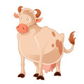 Cartoon Cow Royalty Free Stock Images - 55328619