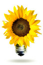 Renewable Energy Concept With Sunflower Royalty Free Stock Image - 5541066