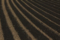 Furrows Royalty Free Stock Image - 55568846