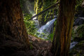 Sol Duc Falls In Olympic National Park Royalty Free Stock Photos - 55577218